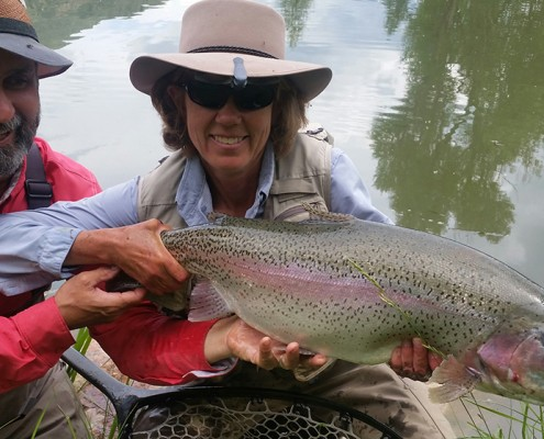 This giant Rainbow was caught 11,000 feet up in the Rockeies using a 6-weight fly rod and a jointed streamer – blind…