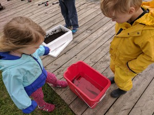 A little girl and boy standing on the dock looking into a bucket with a perch inside