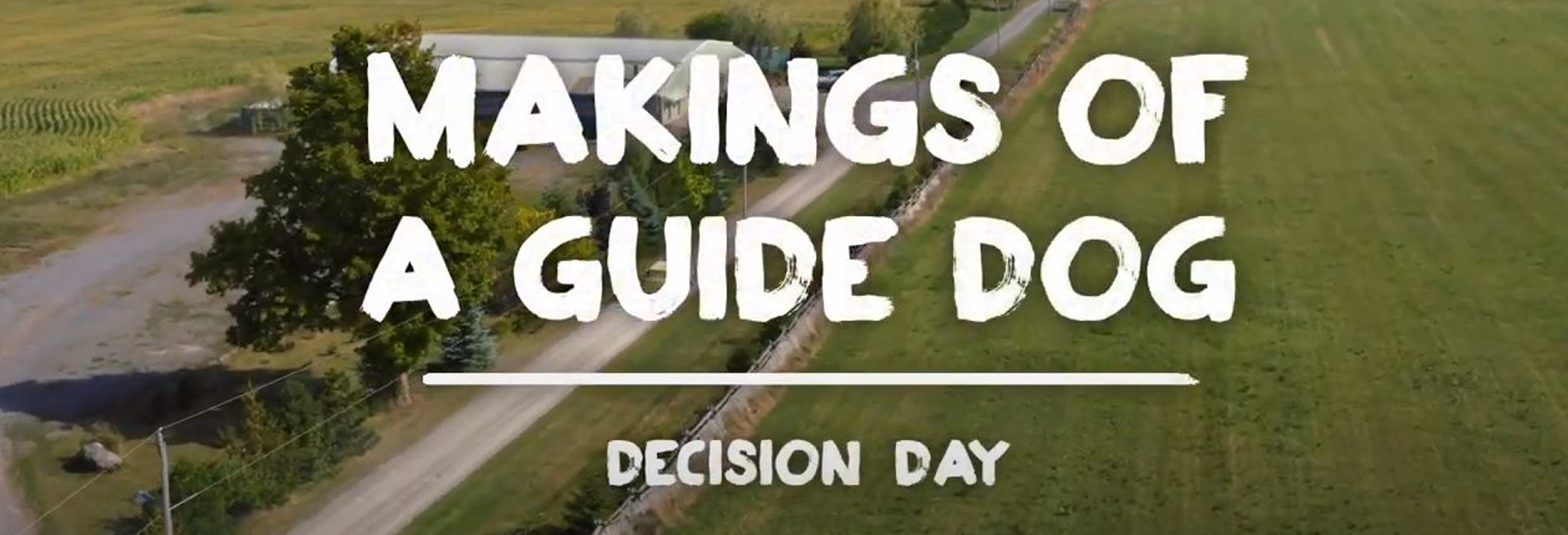 Episode 8-Decision Day